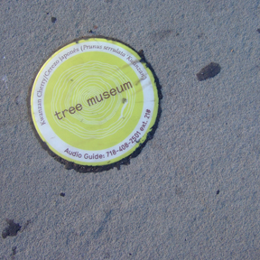 Sidewalk markers include tree name, along with dial-in details for the audio